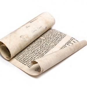 Fragment of a Torah Scroll